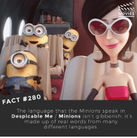 Does anyone understand Minionese? There's bits of German, Korean, Spanish, French and so many more! 🎥 • • • • Double Tap and Tag someone who needs to know this 👇 All credit to the respective film and producers. movie movies film tv camera cinema fact didyouknow moviefacts cinematography screenplay director actor actress act acting movienight cinemas watchingmovies hollywood bollywood didyouknowmovies despicableme minions: D YOU KN  MOVIES  FACT #280  The language that the Minions speak in  Despicable Me  Minions isn't gibberish, it's  made up of real words from many  different languages. Does anyone understand Minionese? There's bits of German, Korean, Spanish, French and so many more! 🎥 • • • • Double Tap and Tag someone who needs to know this 👇 All credit to the respective film and producers. movie movies film tv camera cinema fact didyouknow moviefacts cinematography screenplay director actor actress act acting movienight cinemas watchingmovies hollywood bollywood didyouknowmovies despicableme minions