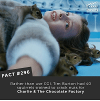 Charlie, Memes, and Movies: D YOU KNOW  MOVIES  FACT #296  Rather than use CGI, Tim Burton had 40  squirrels trained to crack nuts for  Charlie & The Chocolate Factory Did you prefer the original or this version of Willy Wonka's chocolate factory? 📽 • • • Double Tap and Tag someone who needs to know this 👇 All credit to the respective film and producers. movie movies film tv camera cinema fact didyouknow moviefacts cinematography screenplay director actor actress act acting movienight cinemas watchingmovies hollywood bollywood didyouknowmovies studioghibli ghibli japan
