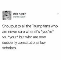Memes, Scholar, and 🤖: Dab Aggin  @DabAggin  Shoutout to all the Trump fans who  are never sure when it's you're  vs. *your but who are now  suddenly constitutional law  scholars Also (1) Donald Trump is now tweeting infantile nonsense from two accounts. Someone please give this man some work to do. (2) If you aren't following Vicente Fox (ex President of Mexico) on Twitter, you really aren't living your best life. (3) It is officially SuperBowlSunday Who is excited for Thomas Edward Brady Jr's 7th trip to the ship? LETSGO TalkThirtyToMe