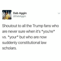 !: Dab Aggin  DabAggin  Shoutout to all the Trump fans who  are never sure when it's *you're*  vs. *your* but who are now  suddenly constitutional law  scholars !