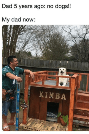 Dad, Dogs, and Saw: Dad 5 years ago: no dogs!!  My dad now:  KIMBA Took a while, but he saw the error in his ways