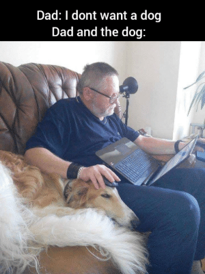 Dad and the dog: Dad and the dog
