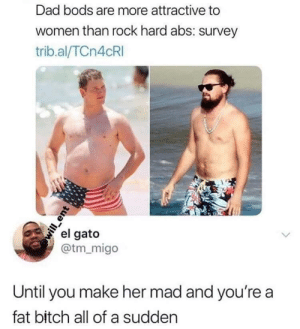 Bitch, Dad, and Women: Dad bods are more attractive to  women than rock hard abs: survey  trib.al/TCn4cRI  el gato  @tm_migo  Until you make her mad and you're a  fat bitch all of a sudden  will ent That escalated quickly..