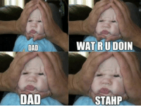 """DAD  DAD  WAT RU DOIN  STAHP I won't lie, I was getting tired of the """"stahp"""" photos, and then I saw this one. I lol'd"""