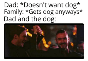 Ah! I just love em so much! Also, congrats Pewds for crossing 100 Mil and also, a happy married life!: Dad: *Doesn't want dog*  Family: *Gets dog anyways*  Dad and the dog: Ah! I just love em so much! Also, congrats Pewds for crossing 100 Mil and also, a happy married life!