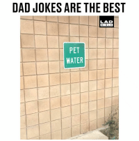 Dad, Memes, and Best: DAD JOKES ARE THE BEST  BIBL E  PET  WATER Dad jokes will never be defeated 😂😂 @Monikerdub