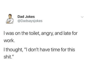 "dont-have-time: Dad Jokes  @Dadsaysjokes  I was on the toilet, angry, and late for  work.  Ithought, ""I don't have time for this  shit."""