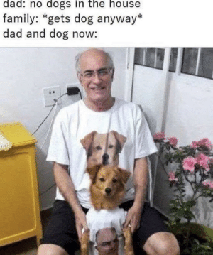 Meirl: dad: no dogs in the house  family: *gets dog anyway*  dad and dog now: Meirl