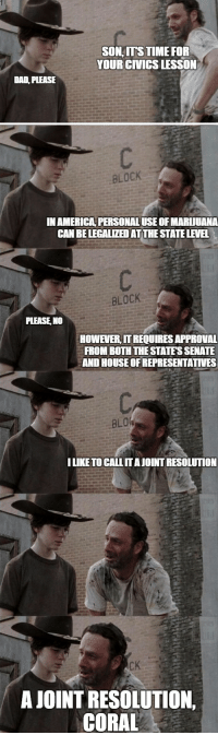 America, Dad, and Time: DAD, PLEASE  SON,ITS TIME FOR  YOUR CIVICS LESSON   BLOCK  IN AMERICA PERSONALUSE OFMARUUANA  CAN BELEGALIZEDATTHESTATELEWEL  BLOCK  PLEASE NO  HOWEVERITREQUIRESAPPROVAL  FROMBOTHTHESTATESSENATE  AND HOUSEOFREPRESENTATIVES  BLO  ILIKE TO CALLITAJOINT RESOLUTION  AJOINT RESOLUTION,  CORAL Rick Grimes - husband, father, professor
