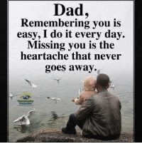 Dad, Memes, and Compassion: Dad,  Remembering you is  easy, I do it every day.  Missing you is the  heartache that never  goes away.  Understandtng Understanding Compassion Group ❤️