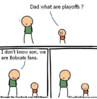 Sorry Bobcats Nation! Credit: Ayub H Ali  http://whatdoumeme.com/meme/hxsq1f: Dad what are playoffs  I don't know son  we  are Bobcats fans.  Brought Bye Facebook.  Memes  com/NBA hatooU Sorry Bobcats Nation! Credit: Ayub H Ali  http://whatdoumeme.com/meme/hxsq1f