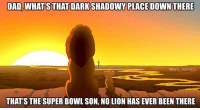 Memes, Super Bowl, and Bowling: DAD WHATSTHATDARKSHADOWY PLACE DOWN THERE  @NFL MEMES  THAT'S THE SUPER BOWL SON, NO LION HAS EVER BEEN THERE Seahawks 26 Lions 6 but Lions fans still blaming the refs like they'd be Super Bowl bound if 1 call changed 😂