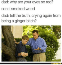 ginger: dad: why are your eyes so red?  son: i smoked weed  dad: tell the truth. crying again from  being a ginger bitch?  funny.