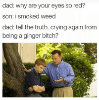 Gingerism: dad: why are your eyes so red?  son: i smoked weed  dad: tell the truth. crying again from  being a ginger bitch?