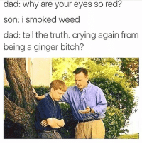 Bitch, Crying, and Dad: dad: why are your eyes so red?  son: i smoked weed  dad: tell the truth. crying again from  being a ginger bitch? If you hippie broccoli, you have to follow @dutchmasterscigars