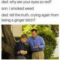 Bitch, Crying, and Dad: dad: why are your eyes so red?  son: i smoked weed  dad: tell the truth. crying again from  being a ginger bitch? Snapchat: dankmemesgang 👻
