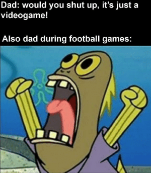 also moms during candy crush: Dad: would you shut up, it's just a  videogame!  Also dad during football games: also moms during candy crush