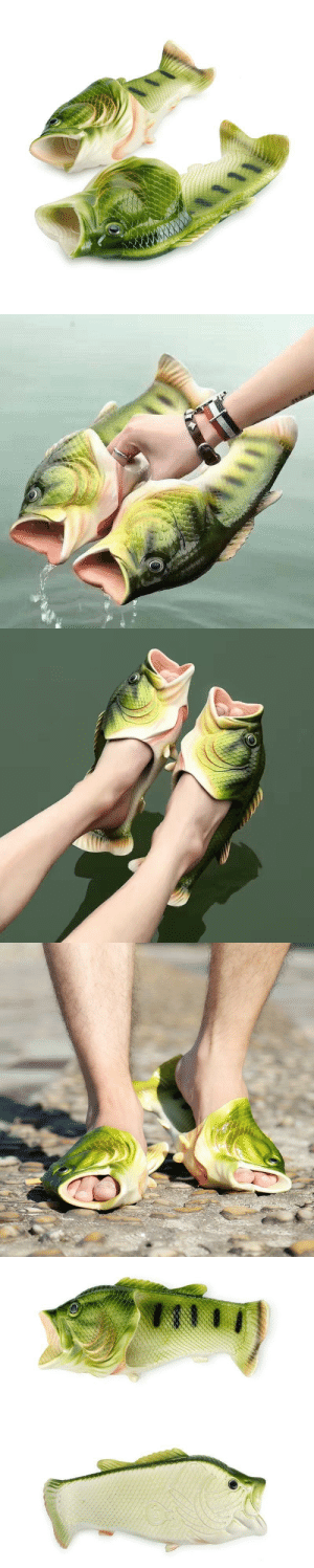 daddys-beloved-kitten:  livelaughlovematters: Imagine, you wearing these comfortable Fish Slippers, everyone around you will be surprised to see. These are the perfect item to Present Gifts to your Loved ones or your friends who love Fishing or you and your whole squad can wear and go to the Beautiful Beaches.  => AVAILABLE HERE <=    Everyone needs these!: daddys-beloved-kitten:  livelaughlovematters: Imagine, you wearing these comfortable Fish Slippers, everyone around you will be surprised to see. These are the perfect item to Present Gifts to your Loved ones or your friends who love Fishing or you and your whole squad can wear and go to the Beautiful Beaches.  => AVAILABLE HERE <=    Everyone needs these!
