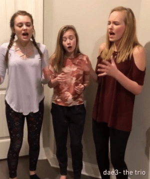 The Greatest Showman medley.  By The Trio - dae3: dae3- the trio The Greatest Showman medley.  By The Trio - dae3