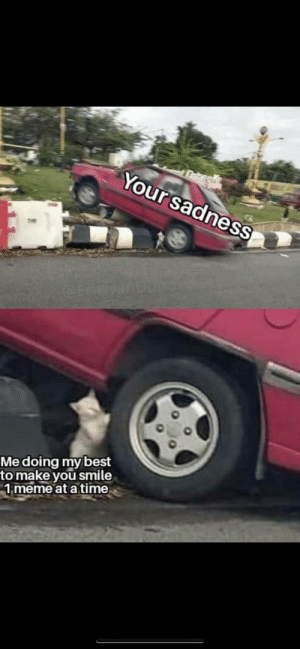 Meme, Memes, and Best: Daengke  Your sadness  dOtrEDE  Me doing my best  to make you smile  1 meme at a time Memes Save Lives : )