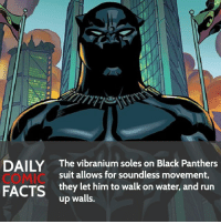 Batman, Facts, and Memes: DAILY  COMIC  FACTS  The vibranium soles on Black Panthers  suit allows for soundless movement,  they let him to walk on water, and run  up walls. Black Panther V.S. Batman (No preparation time) • Follow my other account @wallcrawlerfacts