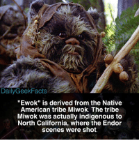 "Would you like to see Ewoks appear in future Star Wars films? - ewok wookie chewbacca wicket lukeskywalker hansolo princessleia c3po r2d2 darthvader returnofthejedi starwars starwarsfacts dailygeekfacts: Daily Geek Facts  ""Ewok"" is derived from the Native  American tribe Miwok. The tribe  Miwok was actually indigenous to  North California, where the Endor  scenes were shot. Would you like to see Ewoks appear in future Star Wars films? - ewok wookie chewbacca wicket lukeskywalker hansolo princessleia c3po r2d2 darthvader returnofthejedi starwars starwarsfacts dailygeekfacts"
