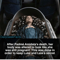 Happy Valentines Day! padme padmeamidala anakinskywalker darthvader obiwan obiwankenobi lukeskywalker starwars starwarsfacts dailygeekfacts: Daily GeekFacts  After Padmé Amidala's death, her  body was altered to look like she  was still pregnant. This was done in  order to keep Luke and Leia a secret. Happy Valentines Day! padme padmeamidala anakinskywalker darthvader obiwan obiwankenobi lukeskywalker starwars starwarsfacts dailygeekfacts
