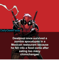 Deadpool WadeWilson ryanreynolds chimichanga mexicanfood zombies marvel marvelcomics marvelfacts dailygeekfacts: Daily GeekFacts  Deadpool once survived a  zombie apocalypse in a  Mexican restaurant because  he fell into a food coma after  eating too many  chimichangas Deadpool WadeWilson ryanreynolds chimichanga mexicanfood zombies marvel marvelcomics marvelfacts dailygeekfacts