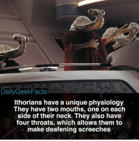 Chewbacca, Memes, and Star Wars: Daily GeekFacts  lthorians have a unique physiology.  They have two mouths, one on each  side of their neck. They also have  four throats, which allows them to  make deafening screeches What is your favorite species from Star Wars 🤔 - ithor ithorian ithorians momawnadon anewhope lukeskywalker darthvader hansolo princessleia chewbacca c3po r2d2 darthmaul starwars starwarsfacts dailygeekfacts
