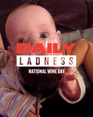Today is National Wine Day - Here's to all the wine lovers out there 🍷: DAILY  LADNES S  NATIONAL WINE DAY Today is National Wine Day - Here's to all the wine lovers out there 🍷