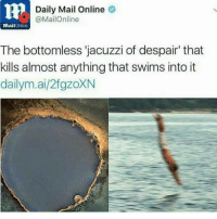 "Memes, Daily Mail, and Mailonline: Daily Mail Online  MailOnline  mail  Online  The bottomless jacuzzi of despair"" that  kills almost anything that swims into it  dailym.ai/2fgzoXN I'm being internally oppressed . . ___________ Follow @thedreammemes.v2 . . . memes meme aids cancer pokemongo dank dankmemes edgy edge lol helpme getfit lgbt kek tøp tagwall twentyonepilots dank dankmemes tagwalls cancer deadinsisde kms meme meme penis penissss dirt 911 paris aids cringe minecraft savespongebob"