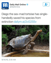 "Sex, Tumblr, and Blog: Daily Mail Online  @MailOnline  MailOnline  Diego the sex-mad tortoise has single-  handedly saved his species from  extinction dailym.ai/2cG2SSv  AFP Getty Images  9/14/16, 2:30 AM <p><a class=""tumblr_blog"" href=""http://phuk-ewe.tumblr.com/post/153090861835"">phuk-ewe</a>:</p> <blockquote> <p><a class=""tumblr_blog"" href=""http://phuk-ewe.tumblr.com/post/153090465380"">phuk-ewe</a>:</p> <blockquote> <p><a class=""tumblr_blog"" href=""http://jooces.tumblr.com/post/150415314675"">jooces</a>:</p> <blockquote> <p>Dick Game Diego<br/></p> </blockquote> <p>Extinction: avoided</p> <p>Species: saved</p> <p>Dick: out</p> </blockquote> <p><b>I AM FORCIBLY REMOVED FROM THE ENDANGERED SPECIES LIST</b></p> </blockquote>"