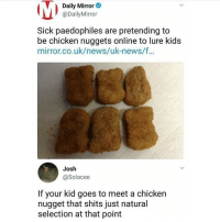 News, Tumblr, and Chicken: Daily Mirror  @DailyMirror  Sick paedophiles are pretending to  be chicken nuggets online to lure kids  mirror.co.uk/news/uk-news/f  Josh  @Solacee  If your kid goes to meet a chicken  nugget that shits just natural  selection at that point daily mirror delivering that quality content once again