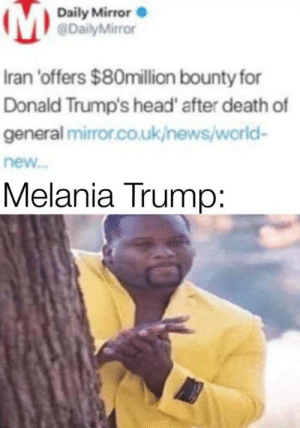 Who wouldn't kill such an idiot: Daily Mirror O  @DailyMirror  Iran 'offers $80million bounty for  Donald Trump's head' after death of  general mirror.co.uk/newsjworld-  new.  Melania Trump: Who wouldn't kill such an idiot