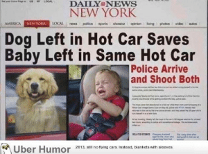 America, New York, and News: DAILY NEWS  NEW YORK  AMERICA  NEWYORK  Dog Left in Hot Car Saves  Baby Left in Same Hot Car  Police Arrive  and Shoot Both  Uber Humor 2013, il no tying ars Instead, blankets with sleeves failnation:  I feel like this has a little something for everyone