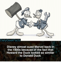 Disney, Memes, and Hulk: DailyGeekFacts  Disney almost sued Marvel back in  the 1900s because of the fact that  Howard the Duck looked so similar  to Donald Duck. Character of the Day part 4 - Howard or Donald? - howardtheduck howard donald donaldduck hulk spiderman captainamerica ironman disney marvel marvelcomics marvelfacts dailygeekfacts