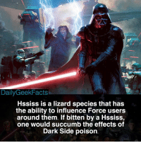 "They're also called ""Dark Side Dragons."" _ darthvader darthmaul darthbane darthrevan hssiss lukeskywalker obiwankenobi rey finn starwars starwarsfacts dailygeekfacts: DailyGeekFacts  HSsiss is a lizard species that has  the ability to influence Force users  around them. If bitten by a Hssiss,  one would succumb the effects of  Dark Side poison They're also called ""Dark Side Dragons."" _ darthvader darthmaul darthbane darthrevan hssiss lukeskywalker obiwankenobi rey finn starwars starwarsfacts dailygeekfacts"