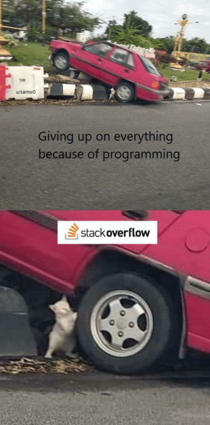 The whole industry wouldn't exist without it: Dakangle  THB  u/samwo  everything  Giving up on  because of programming  stack overflow The whole industry wouldn't exist without it