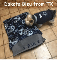 Dakota Bleu