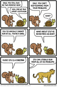 funny Running gag: DALE YOU STILL OWE  DALE, YOU CANT  ME TWO MONTHS RENT  KEEP RUNNING FROM  UHH, CAN WE TALK YOUR PROBLEMS  LATER? GOTTA RUN  WHAT?  YOU TECHNICALLY CANNOT  WHAT ABOUT STU? HE  RUN AT ALL. YOU'RE A SNAIL  NEVER PAYS HIS RENT!  STU CAN LITERALLY RUN  DUDE! STU IS A CHEETAH  FROM ALL OF HIS PROBLEMS  MRLOVENS funny Running gag