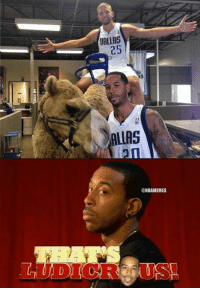 Nba, Zhu, and Devin: DALLAS  25  NBAMEMES Can't tell if Devin Harris or Ludacris!  Credit: Jacky Zhu