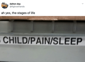 Life, Pain, and Sleep: dalton day  @lilghosthands  ah yes, the stages of life  CHILD/PAIN/SLEEP