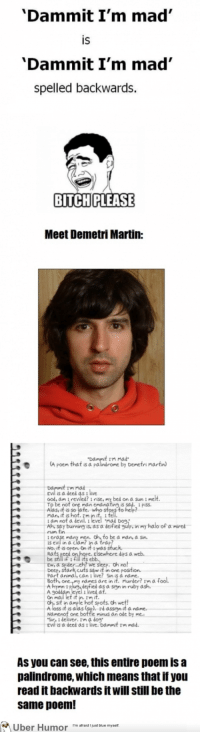 """Af, Ash, and Bitch: 'Dammit I'm mad  IS  'Dammit I'm mad'  spelled backwards.  BITCH PLEASE  Meet Demetri Martin:  t rm mad  A poem that is a palindrome by Demetri martin  rm mad  is a deed as t live  ood, am I revied? i rise, my bed on a Sun i melt  man e  ing,is  Aasuit s hof fe nito sten to hep  mad Dog.  am not a  Ah, say burning is, as a deified gulp, in my halo of a mired  rum tin  men. oh to be a man, a sin.  is evil in a clam? in a trap?  No.it is open. On it Iwas stuc  Rats eeed  be still if 1 fill its eblb  Ew, a spider... eh? we sleep. oh no!  Deep, stark cuts saw it in one posit  Part animal, can i ive! Sin iS a name  dips a  names are in it. Murder? Im af  hymn 11P  Ale eyel iet ar.asninrby ash  Sit in dme le hot spots. oh wetf!  A loss it is alas (sie). rdassign it a name  Namenot one bottle minus an ode by  EVİ is a deed as t live.  Dammit rm mad.  As you can see, this entire poem is a  palindrome, which means that if you  read it backwards it will still be the  same poem!  Uber Humor 'm afrid just blue myself <p><a href=""""http://omg-images.tumblr.com/post/152854245066/this-guy-is-crazy-smart"""" class=""""tumblr_blog"""">omg-images</a>:</p>  <blockquote><p>This guy is crazy smart</p></blockquote>"""