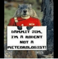 DAMMIT JIM,  IM A RODENT  NOT A  METEOROLOGIST! livelongandstaywarm because I trust rodents aboot as much as I do meteorologists... 😳 ... the Canadian condition, eh! 🇨🇦
