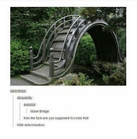 Memes, 🤖, and Bridge: dammtszzi  ahoyamty  auSonia  Moon Bridge  how the fuck are you supposed to cross that  With determination. LET'S GET DOWN TO BUSINESS - Max textpost textposts