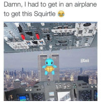 Airplane: Damn, I had to get in an airplane  to get this Squirtle  Goob
