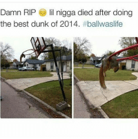 Dunk, Food, and Funny: Damn RIP lil nigga died after doing  the best dunk of 2014. HES BEEN DEAD FOR THREE YEARS WHAT ~adeezha (@adeezhaa) - tags: tumblrtextpost tumblrposts textpost tumblr shrek instatumblr memes posts phan funnythings 😂 same funny haha loltumblr lol relatable rarepepe funnythings funnytextposts pepeislife meme funnystuff pepe food spam