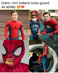 25 Best Tom Holland Memes But Memes And Memes Spider Man