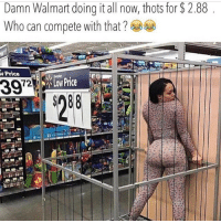 Bruh, Lmao, and Lol: Damn Walmart doing it all now, thots for $2.88  Who can compete with that?  N Price 😂😂😂😂😂 @factsandjokes @factsandjokes lol . . . . . . . . . . . . . . . . . . . lmao wtf toofunny imdone yeahyeah factsandjokes gmpost funnygram bestmemes wshh moodaf what nochill bruh stop bullshit hahahaha justforfun we ppl factsonly damn always niggasbelike bitchesbelike younotme damn lovethis bootyfordays