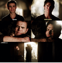 """[8x16] day 4: favorite stef friendship. idk if you call this a friendship but defan all the way. I love how they ended the show with them, it was so sweet. especially """"Hello brother"""" like I can't. ⠀⠀⠀⠀⠀⠀⠀⠀⠀⠀⠀⠀⠀⠀⠀⠀⠀⠀⠀⠀⠀⠀⠀⠀⠀⠀⠀⠀⠀⠀ q:favorite friendship involving Stefan?: Damon.  Hello brother. [8x16] day 4: favorite stef friendship. idk if you call this a friendship but defan all the way. I love how they ended the show with them, it was so sweet. especially """"Hello brother"""" like I can't. ⠀⠀⠀⠀⠀⠀⠀⠀⠀⠀⠀⠀⠀⠀⠀⠀⠀⠀⠀⠀⠀⠀⠀⠀⠀⠀⠀⠀⠀⠀ q:favorite friendship involving Stefan?"""